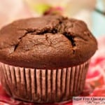 Sugar Free Chocolate Muffins