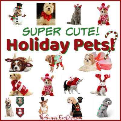 Super Cute Holiday Pets