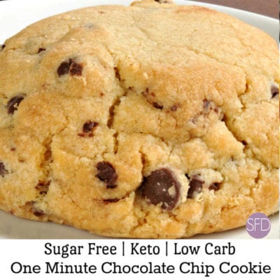 One Minute Sugar Free Chocolate Chip Cookie