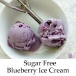 Sugar Free Blueberry Ice Cream