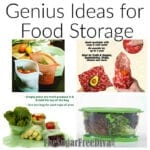 Genius Ideas for Food Storage