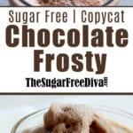 Sugar Free Copycat Frosty Recipe
